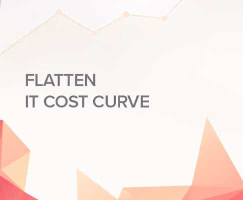 Flatten IT Cost Curve in the Dawn of Digital Innovation